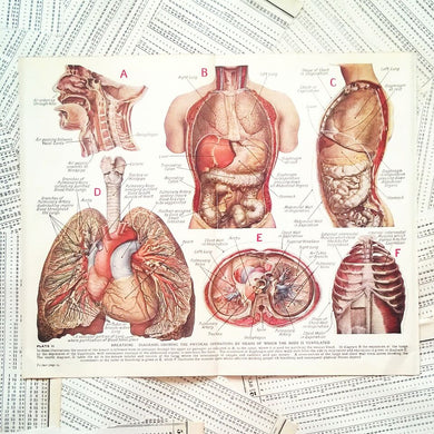 Vintage Medical Page - Breathing