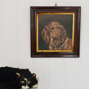 C.1890 Oil on Canvas Board - Fred the Dachshund, 3 Years