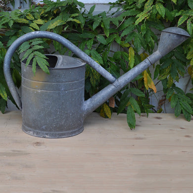 Continental Galvanised Watering Can No1