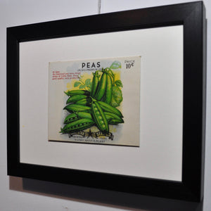 Framed Original 1940s Seed Packet - Peas