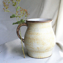 Load image into Gallery viewer, Denby Stoneware Jug
