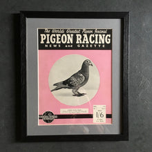 Load image into Gallery viewer, Vintage racing pigeon print - 'Prince of Orange'