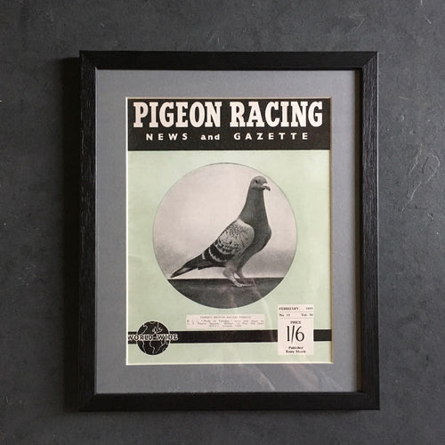 Vintage racing pigeon print - 'Pride of Faraday'