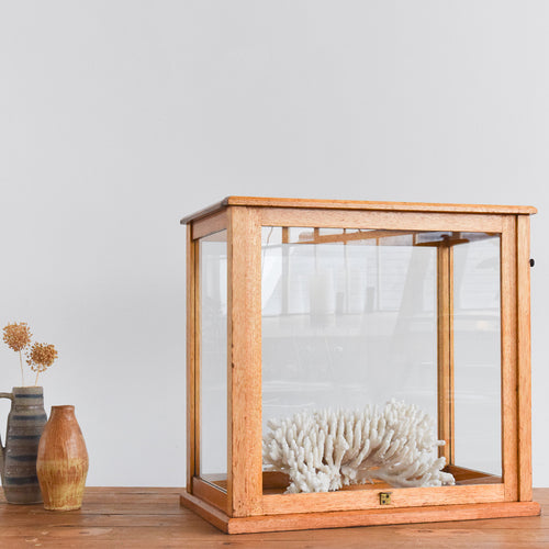 Vintage Wooden Ex-Museum Glazed Storage Box Display Cabinet / Case