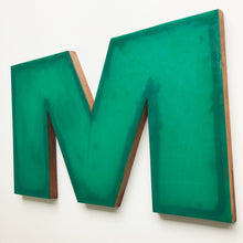 Load image into Gallery viewer, M - Large Letter Ply and Perspex
