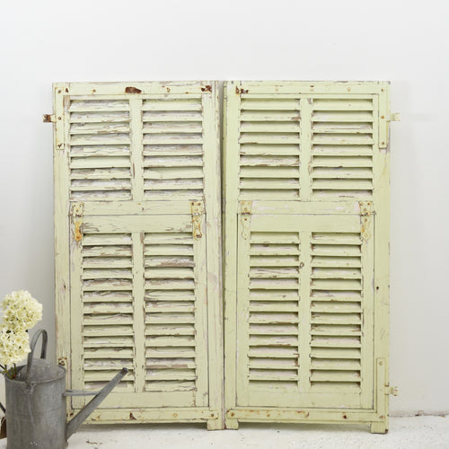 Pale Green Vintage French Shutters