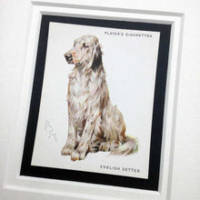 Load image into Gallery viewer, Framed Dog Breed Vintage Cigarette Card - English Setter - Full
