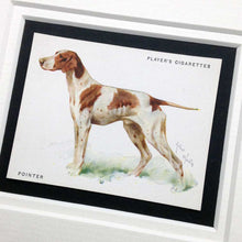 Load image into Gallery viewer, Framed Dog Breed Vintage Cigarette Card - Pointer - Full