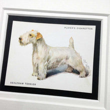 Load image into Gallery viewer, Framed Dog Breed Vintage Cigarette Card - Sealyham Terrier - Full