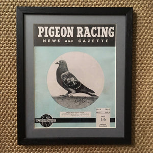 Vintage racing pigeon print – No.4 'Nantes Queen'