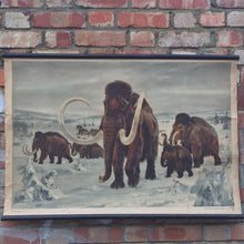 Load image into Gallery viewer, 1950s Czech School Chart of a Mammoth