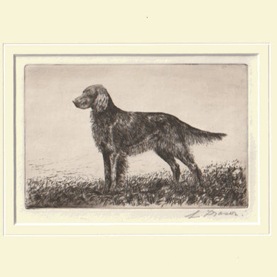 Original Antique Etching by L. Fraser