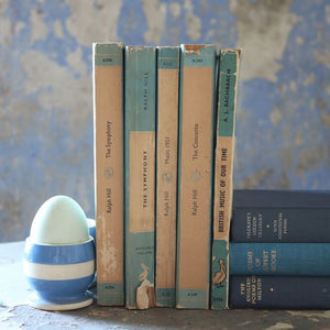 Turquoise Book Bundle - 5 Pelican Books