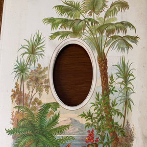 19th century frame  tropical - single picture