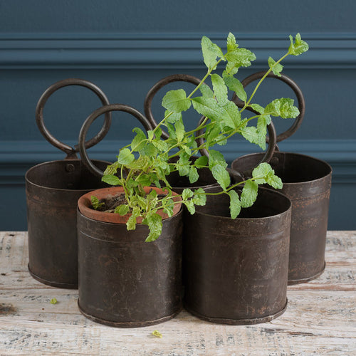 Small Metal Buckets with Hoop Handles