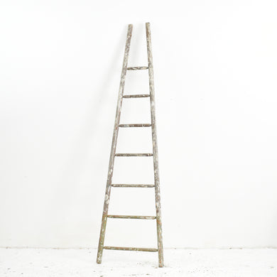 Vintage French Fruit Picking Ladder Tall