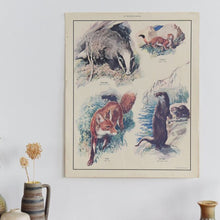 Load image into Gallery viewer, Vintage Harvey School Educational Poster / Print - Flesh-Eating Animals