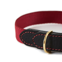 Load image into Gallery viewer, Leather & Webbing Collar-Burgundy-XL