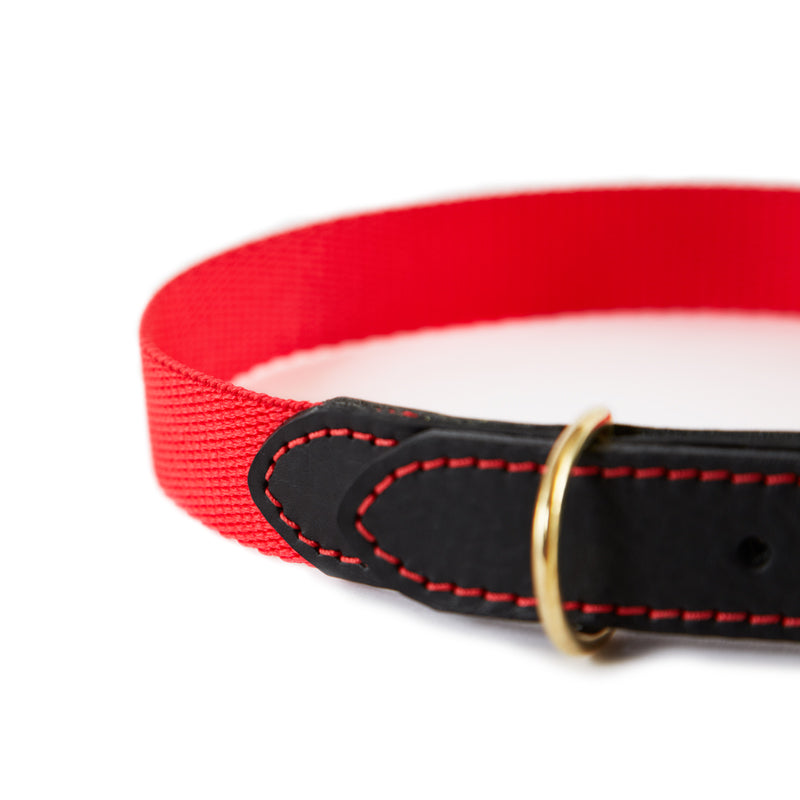 Leather & Webbing Collar-Red-Large