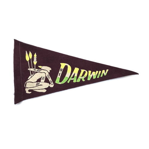 Small Vintage Pennant - Darwin