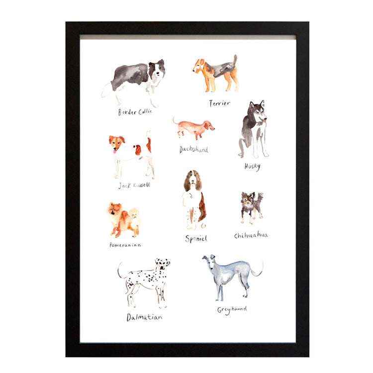 Encyclopedia Of Dogs Print - Katie Johnston
