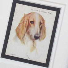 Load image into Gallery viewer, Framed Dog Breed Vintage Cigarette Card - Saluki - Head