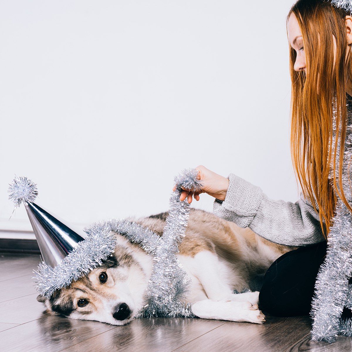 6 Simple Changes to Improve Your Dog's Health in 2020
