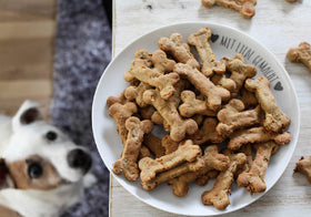 Simple and Delicious Dog Treat Recipes