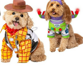 Five Pet Halloween Costumes You'll Want to Try This Season