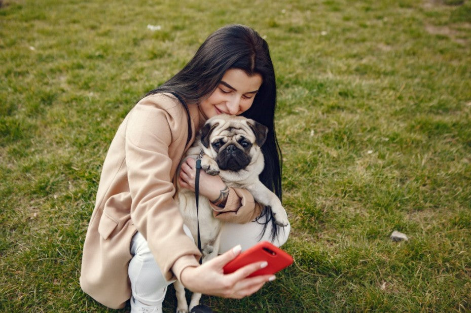 Tips For Getting Good Pet Photos