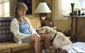 Our Top 5 Pet-Themed Movies
