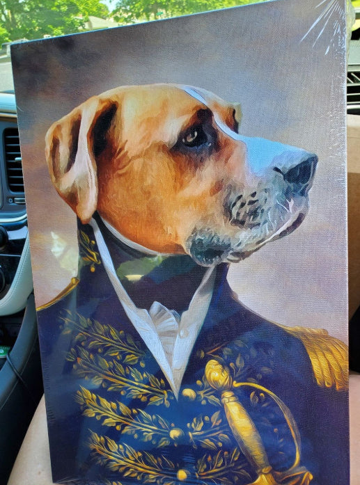 Admiral - Custom Pet Portraits