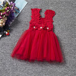 Flower Girl Dress Princess Party Wear Toddler Girl 2-6 Years