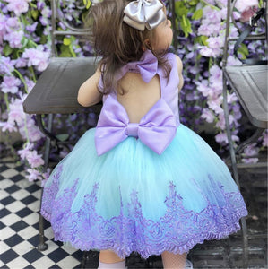 Toddler Flower Girl Dresses Lace Birthday Dress