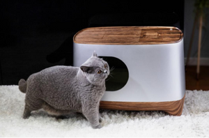 Meet Our Cat Litter Box Happy pets for life