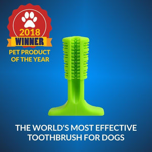 ActiBrush Dog Toothbrushing Stick