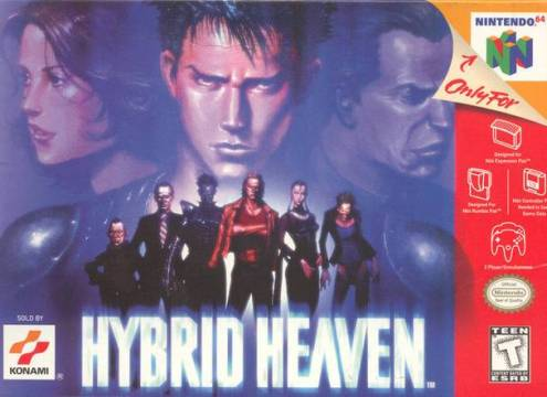 HYBRID HEAVEN - Video Game Delivery