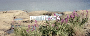 Kuura Essentials - Moving to the Countryside by the Sea