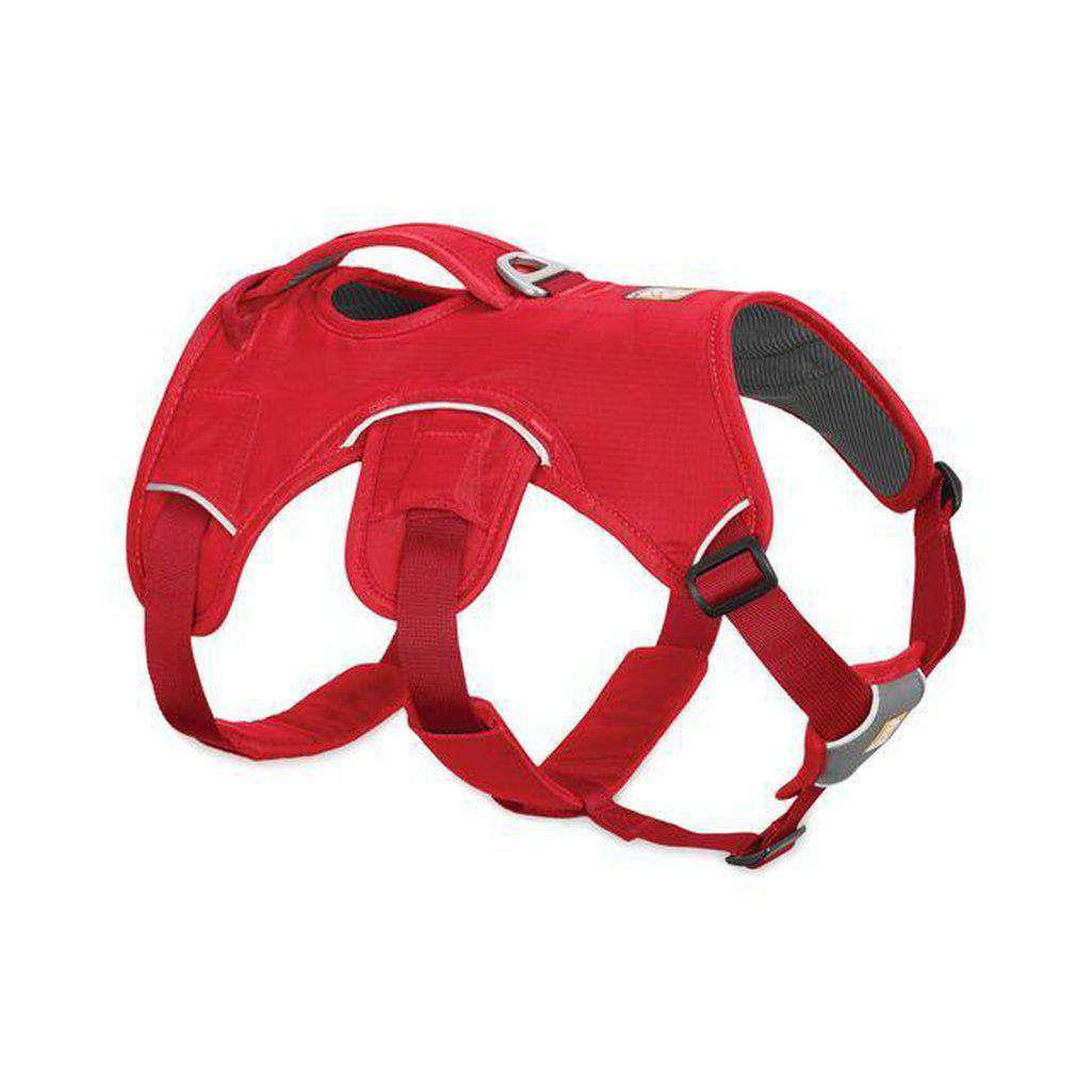Ruffwear Web Master Dog Harness-Dog Harness-Ruffwear-S-Red Currant-Dofos Pet Centre