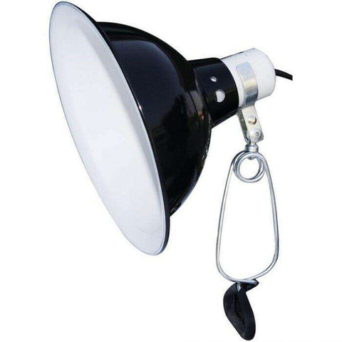 Komodo Dome Clamp Lamp Fixture