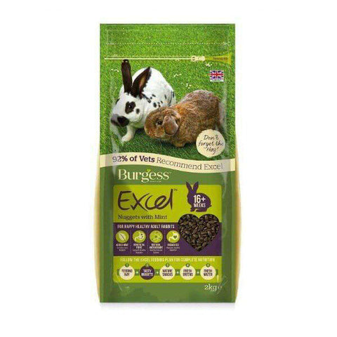 Burgess Excel Tasty Nuggets for Rabbits with Mint