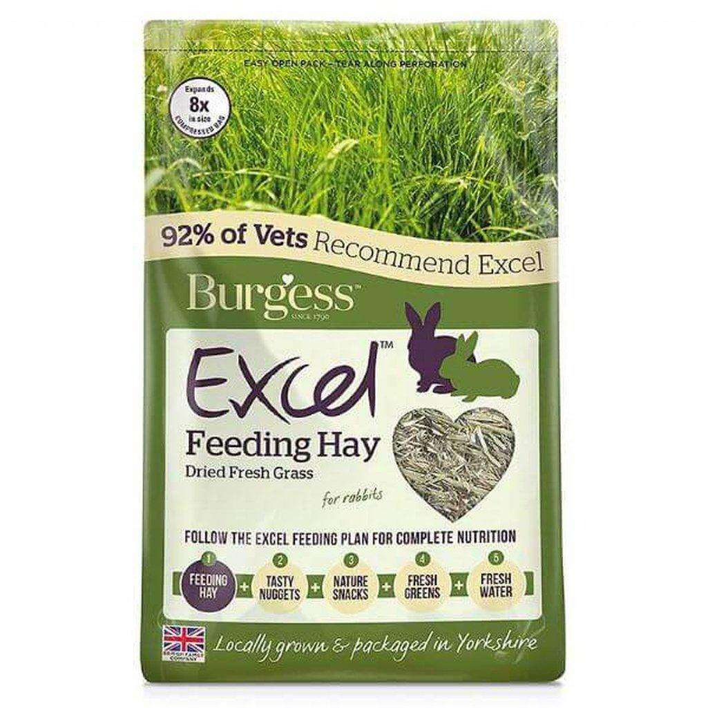 Burgess Excel Barn Dried Feeding Hay - 1kg