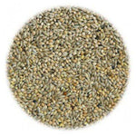 Budgie 50/50 Seed 1kg
