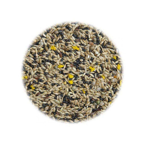 Mixed Canary Food 1kg