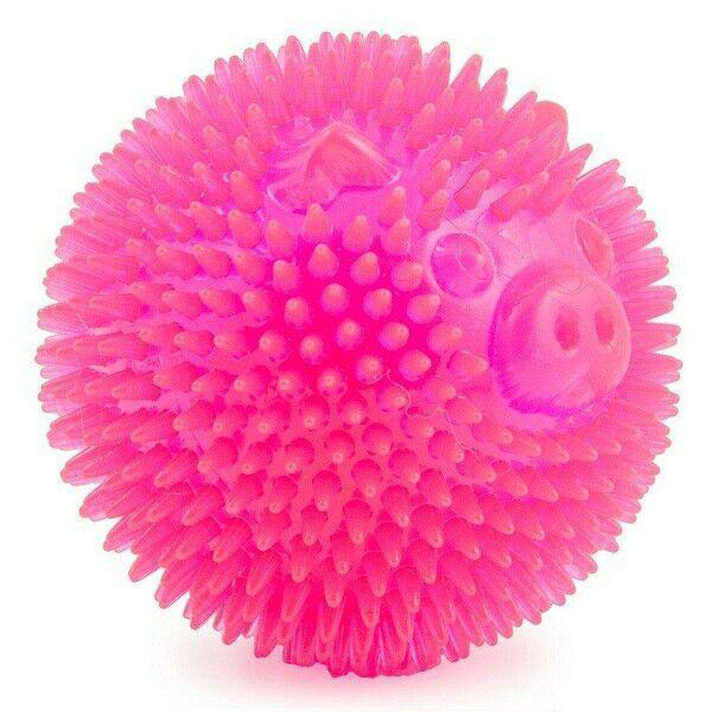 Ancol Flashing Spiky Star Ball Pig Pink 9cm Dog Toy-Dog Toys-Ancol-Dofos Pet Centre