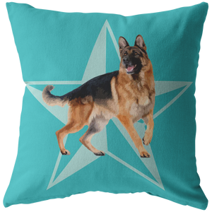 Custom Pillow - Big Star