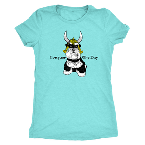 Schnauzer Viking Conquer The Day Women Triblend T-Shirt