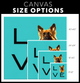 Custom Pet Canvas - LOVE