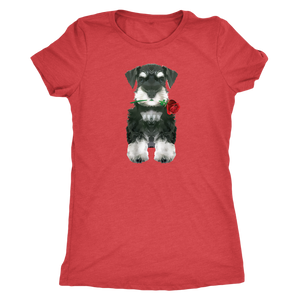 Miniature Schnauzer Puppy with Red Rose -Women Triblend T-Shirt