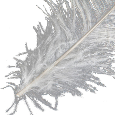 Ostrich Feather White Home Decoration